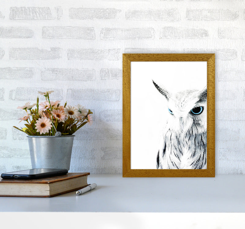 Owl I Photography Print by Victoria Frost A4 Print Only