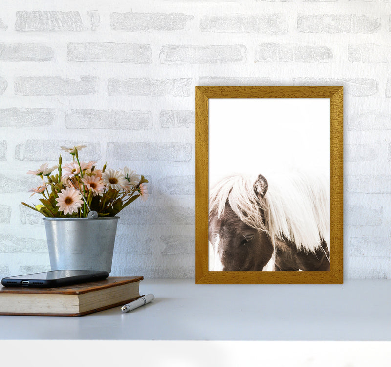 Horse III Photography Print by Victoria Frost A4 Print Only