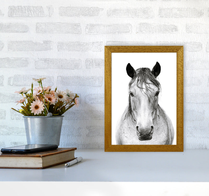 Horse I Photography Print by Victoria Frost A4 Print Only