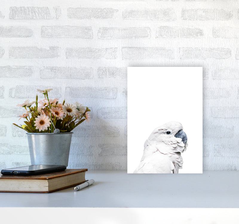 White Cockatoo Photography Print by Victoria Frost A4 Black Frame