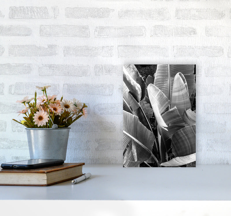 Palms Leafs Photography Print by Victoria Frost A4 Black Frame