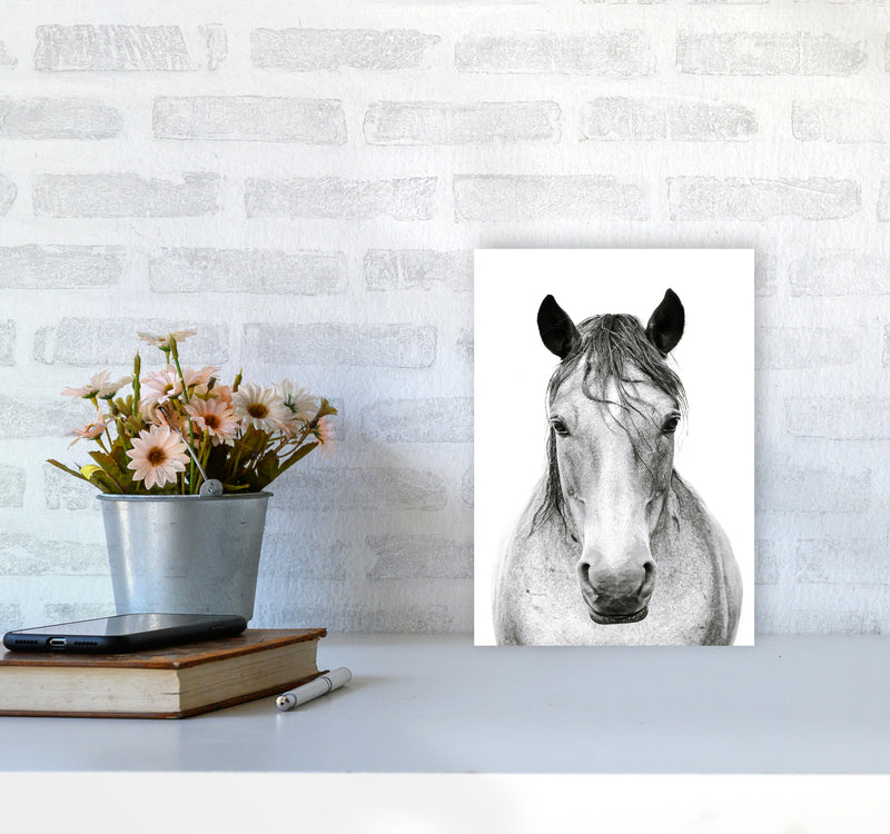 Horse I Photography Print by Victoria Frost A4 Black Frame