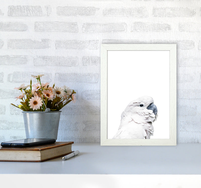 White Cockatoo Photography Print by Victoria Frost A4 Oak Frame