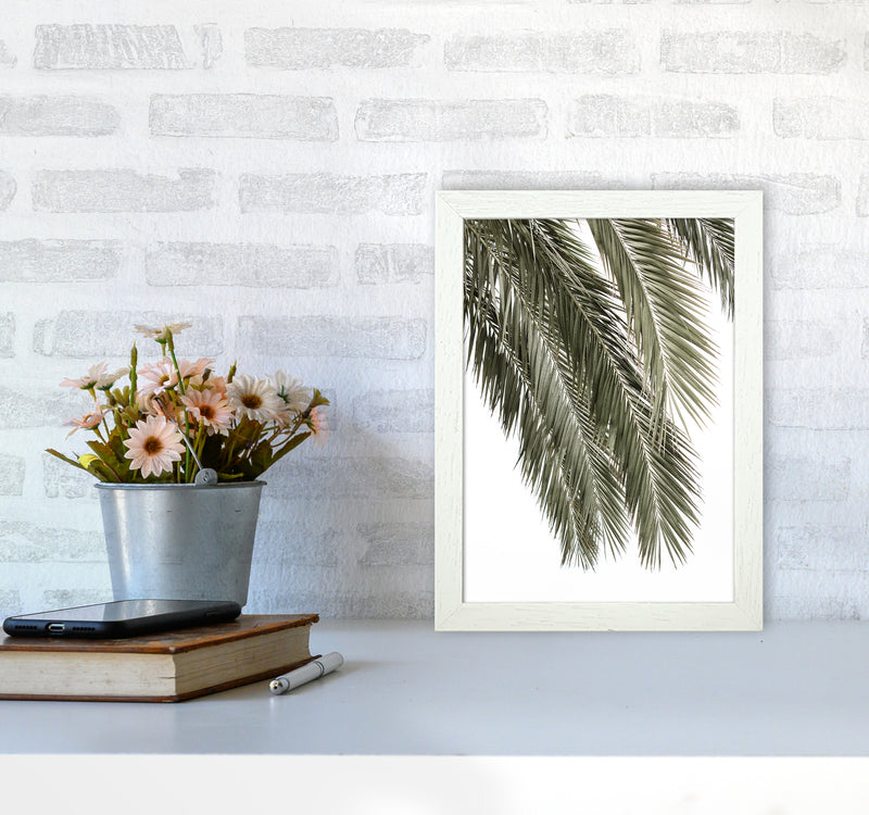 Palms Photography Print by Victoria Frost A4 Oak Frame