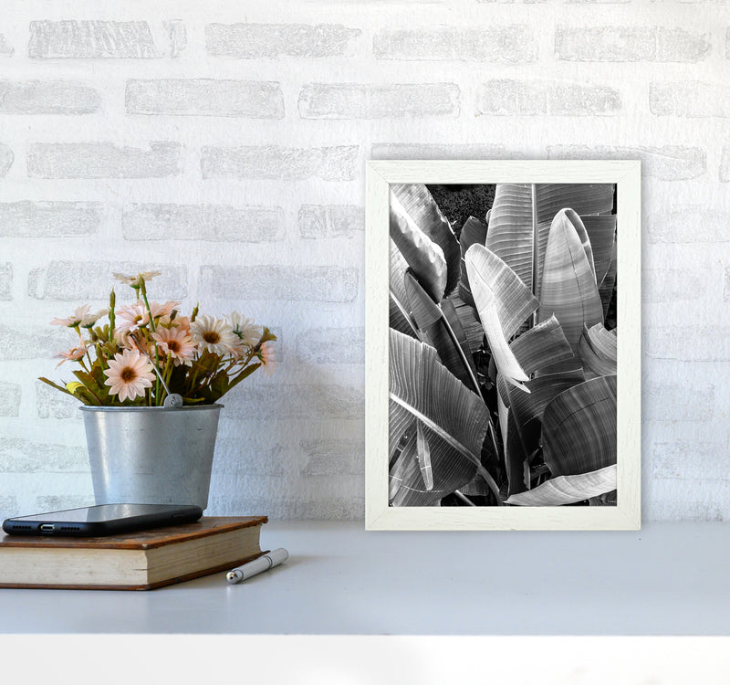 Palms Leafs Photography Print by Victoria Frost A4 Oak Frame