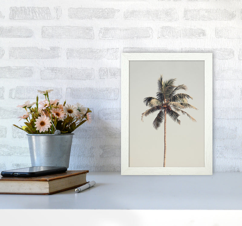 Palm tree by the beach Photography Print by Victoria Frost A4 Oak Frame