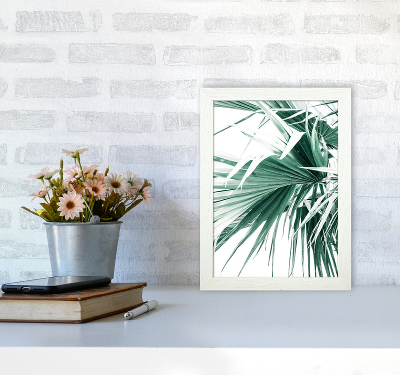 Palm Leaves Photography Print by Victoria Frost A4 Oak Frame