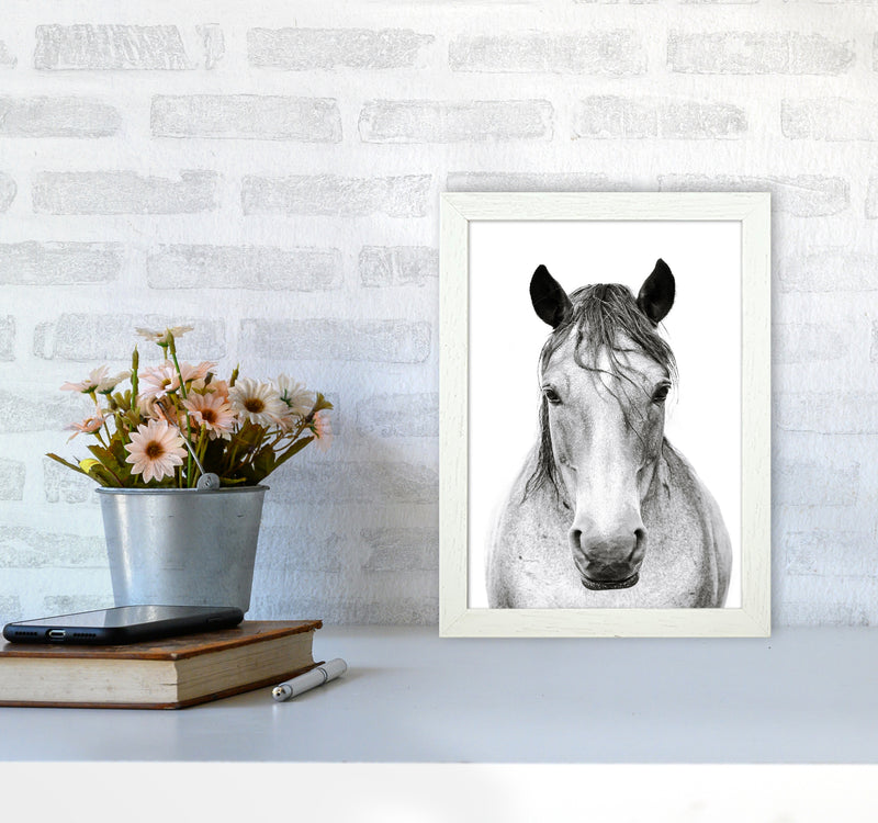 Horse I Photography Print by Victoria Frost A4 Oak Frame