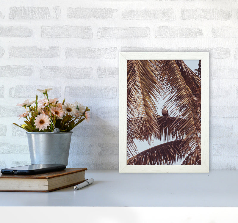 Eagle Photography Print by Victoria Frost A4 Oak Frame
