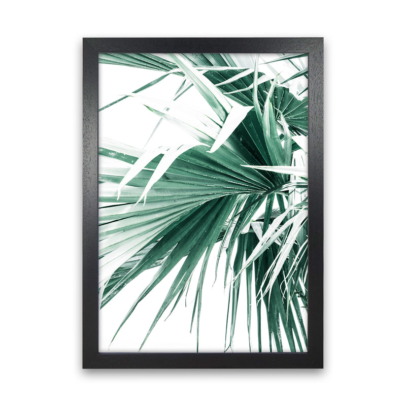 Palm Leaves Photography Print by Victoria Frost Black Grain