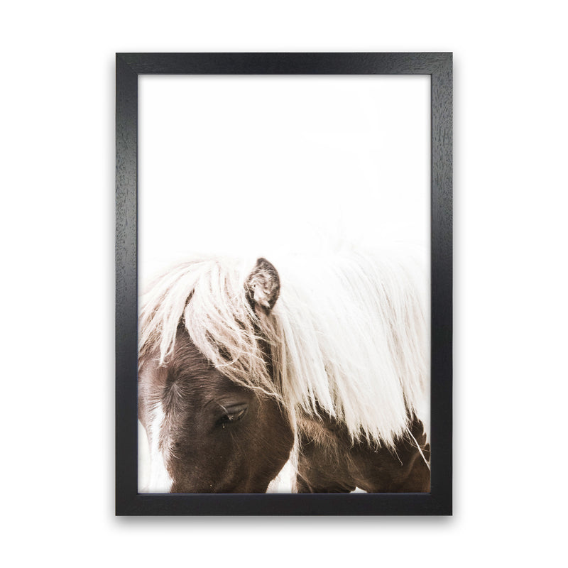 Horse III Photography Print by Victoria Frost Black Grain