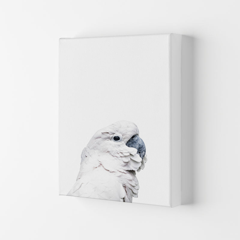 White Cockatoo Photography Print by Victoria Frost Canvas