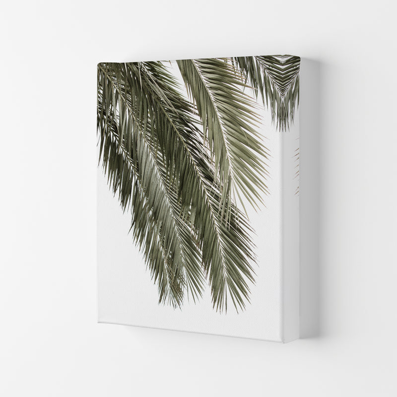 Palms Photography Print by Victoria Frost Canvas