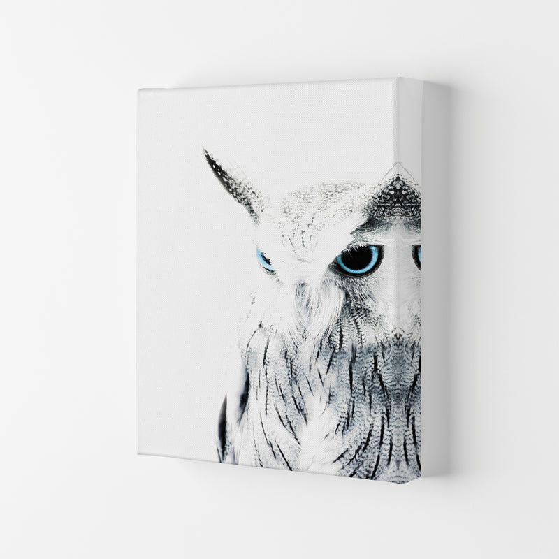 Owl I Photography Print by Victoria Frost Canvas