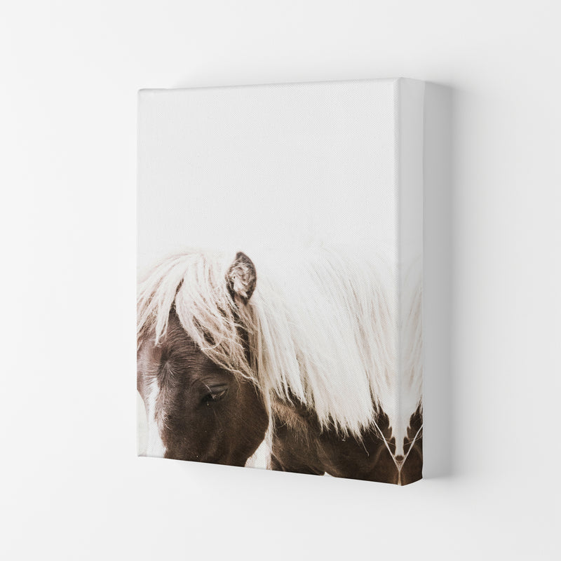 Horse III Photography Print by Victoria Frost Canvas