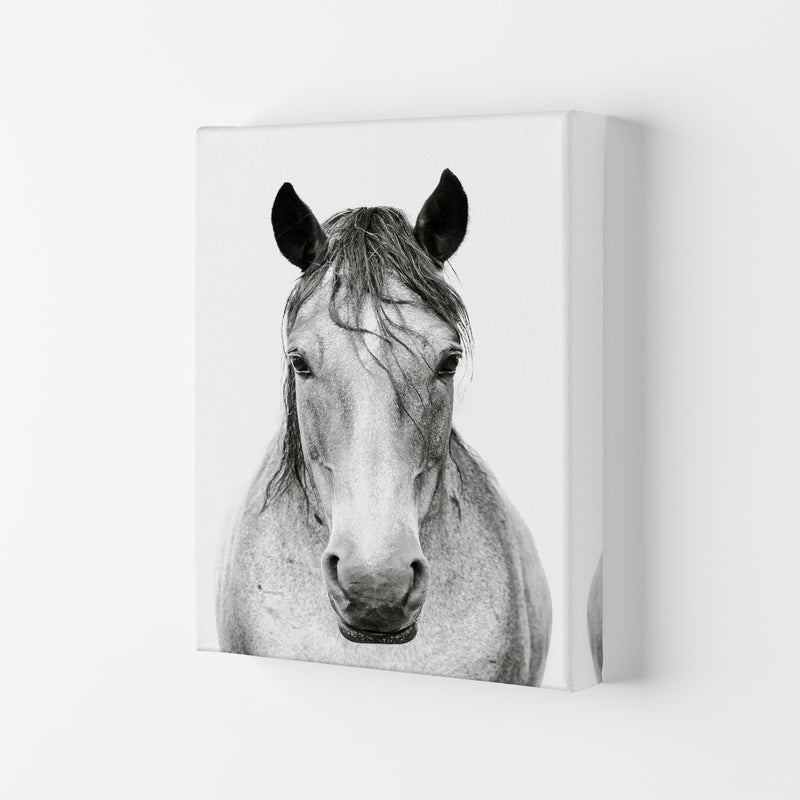 Horse I Photography Print by Victoria Frost Canvas