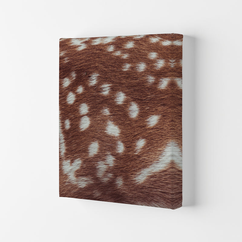 Deer skin Photography Print by Victoria Frost Canvas