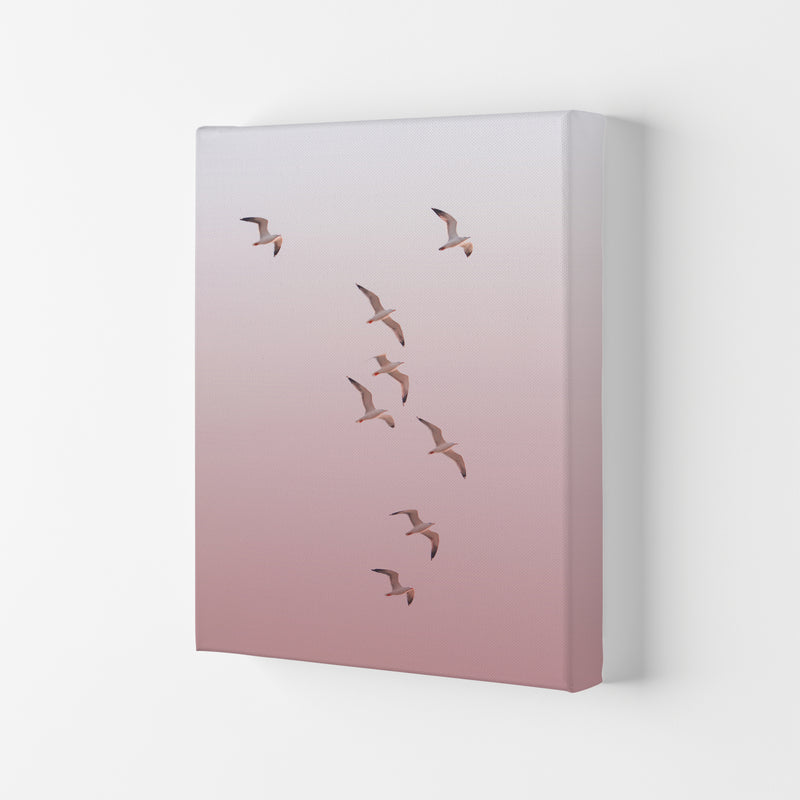 Birds in the Sky-pink Photography Print by Victoria Frost Canvas