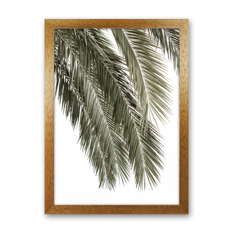 Palms Photography Print by Victoria Frost Oak Grain