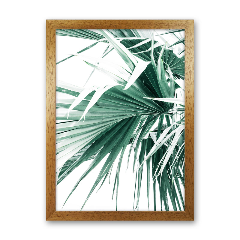 Palm Leaves Photography Print by Victoria Frost Oak Grain
