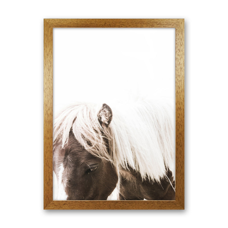 Horse III Photography Print by Victoria Frost Oak Grain