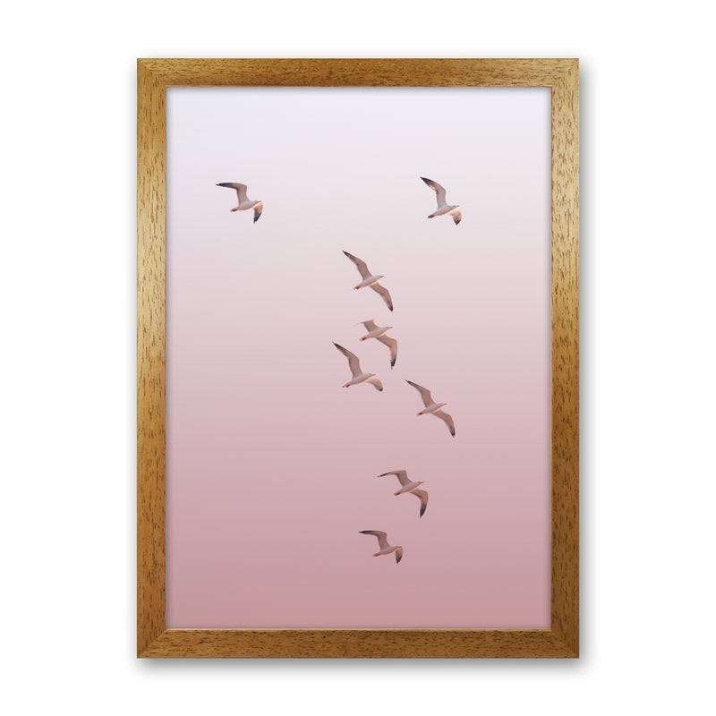 Birds in the Sky-pink Photography Print by Victoria Frost Oak Grain