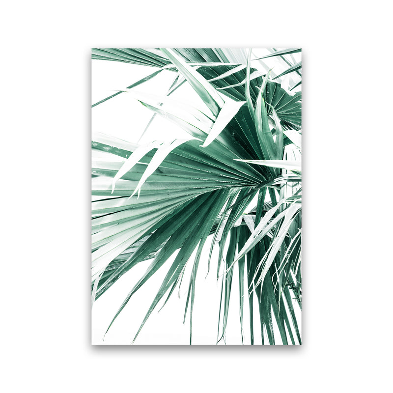 Palm Leaves Photography Print by Victoria Frost Print Only