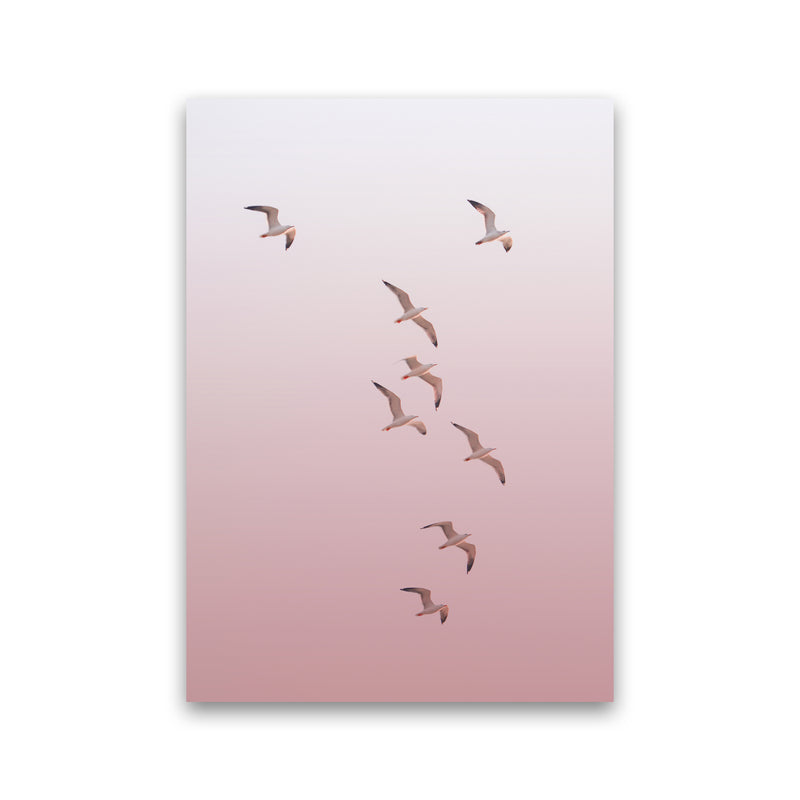 Birds in the Sky-pink Photography Print by Victoria Frost Print Only