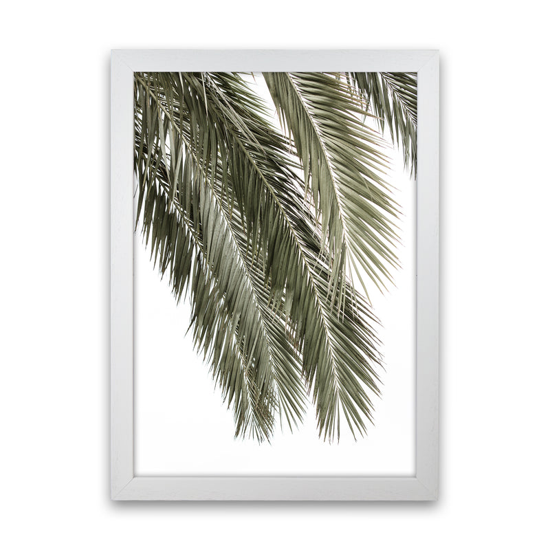 Palms Photography Print by Victoria Frost White Grain