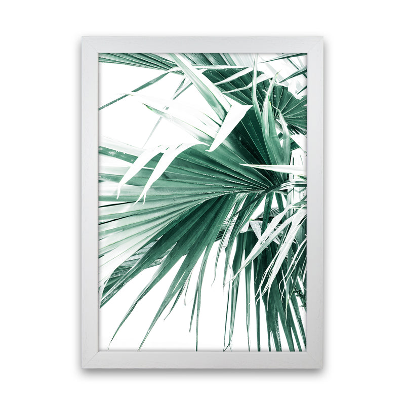 Palm Leaves Photography Print by Victoria Frost White Grain