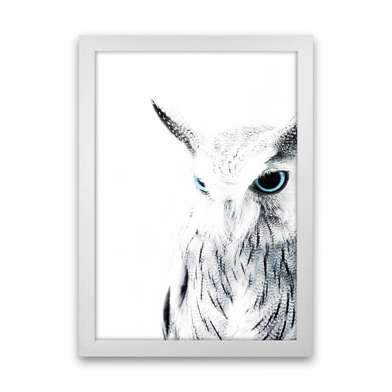 Owl I Photography Print by Victoria Frost White Grain