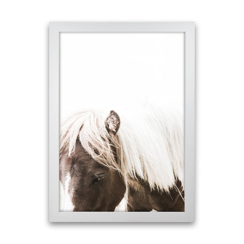 Horse III Photography Print by Victoria Frost White Grain