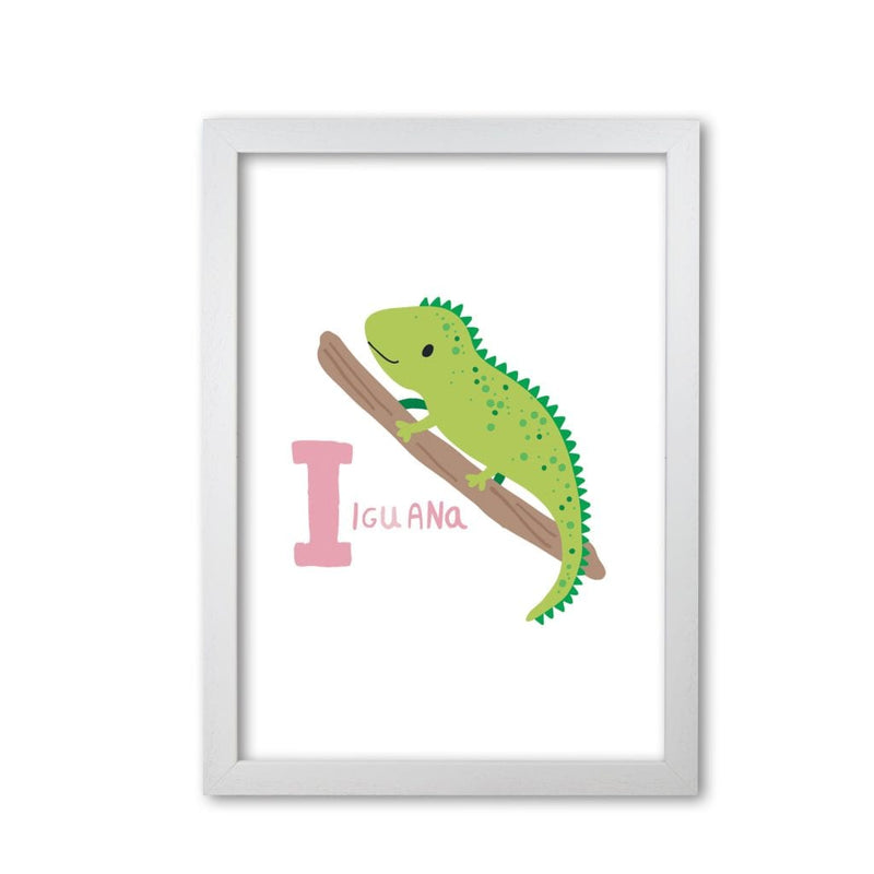 Alphabet animals, i is for iguana modern fine art print, framed childrens nursey wall art poster