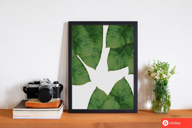 Banana leaf i fine art print by orara studio, framed botanical &
