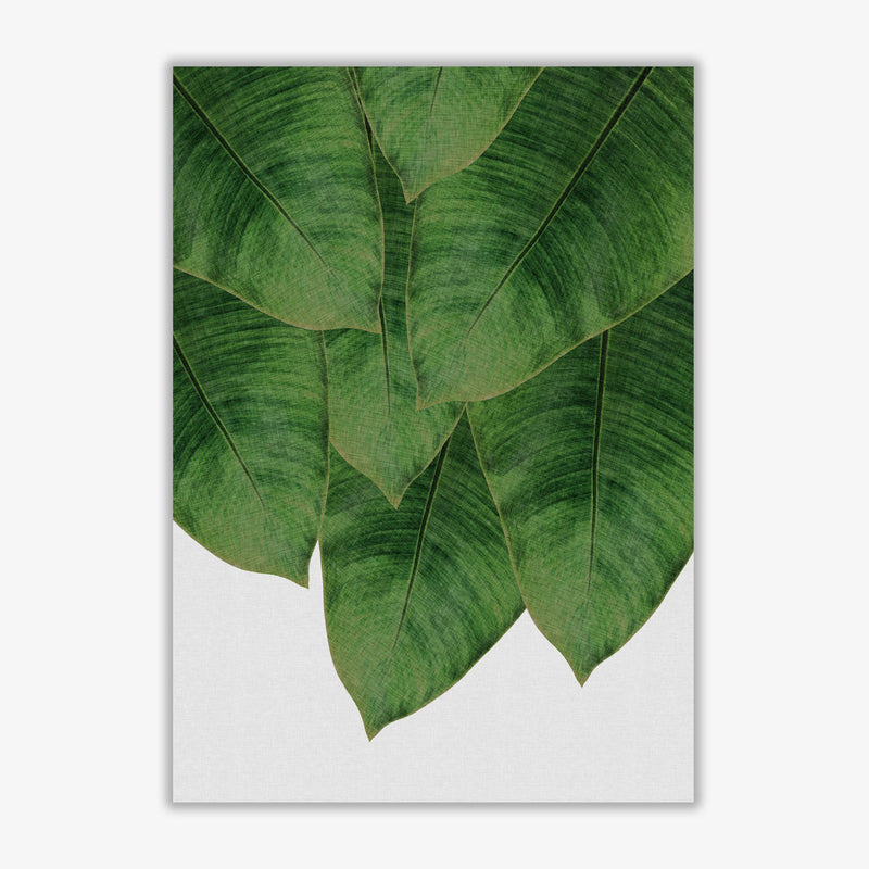Banana leaf iii fine art print by orara studio, framed botanical &