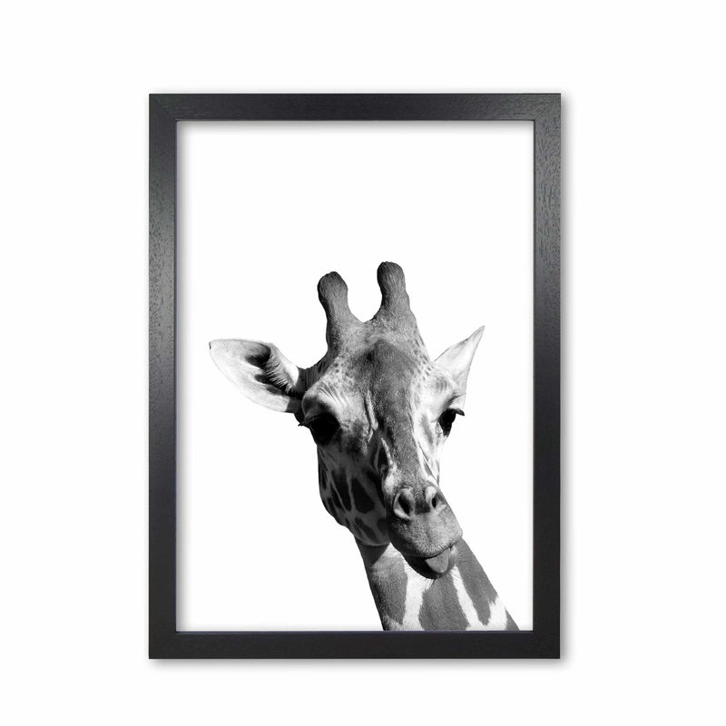 Black and white giraffe modern fine art print