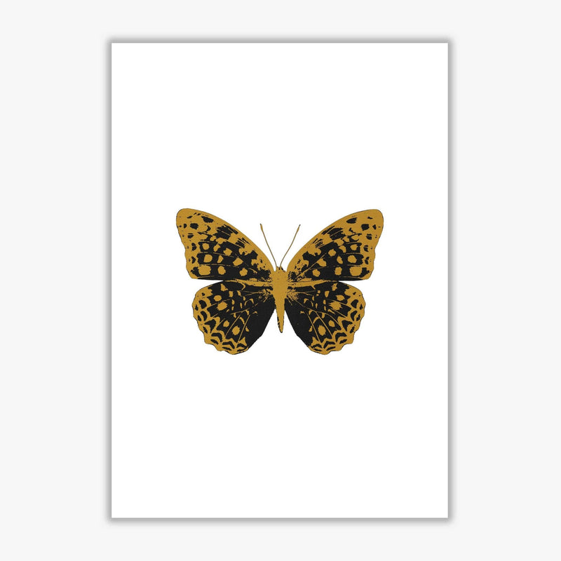 Black butterfly fine art print by orara studio