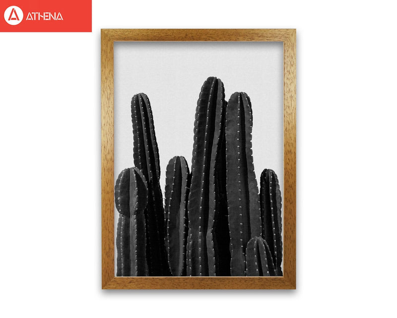 Cactus black and white fine art print by orara studio, framed botanical &