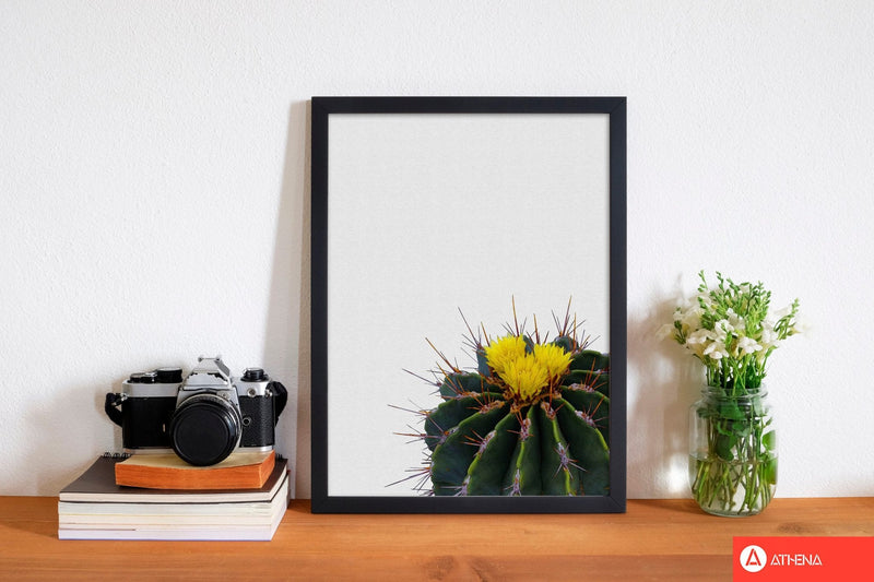 Flower cactus fine art print by orara studio, framed botanical &