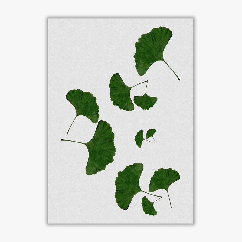 Ginkgo leaf i fine art print by orara studio, framed botanical &