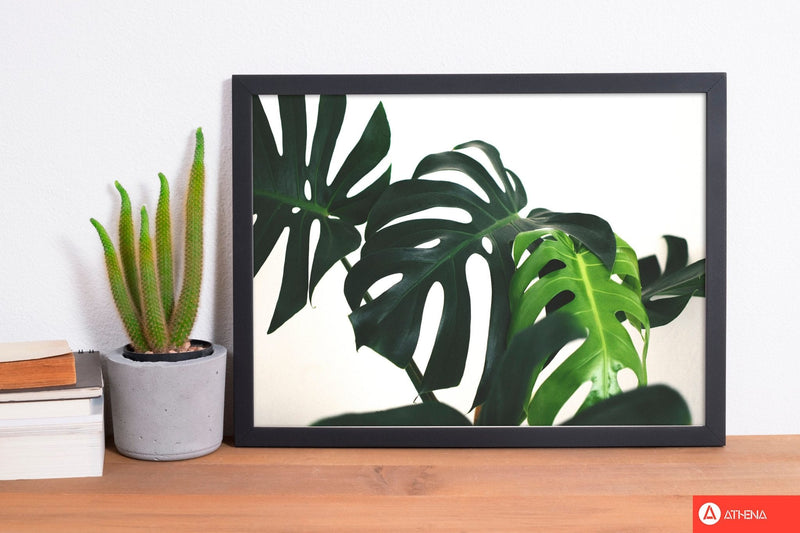 Monstera leaf landscape modern fine art print, framed botanical &