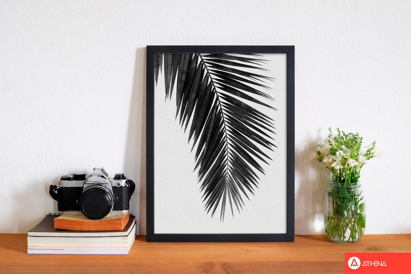 Palm leaf black &
