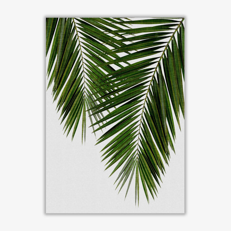 Palm leaf ii fine art print by orara studio, framed botanical &