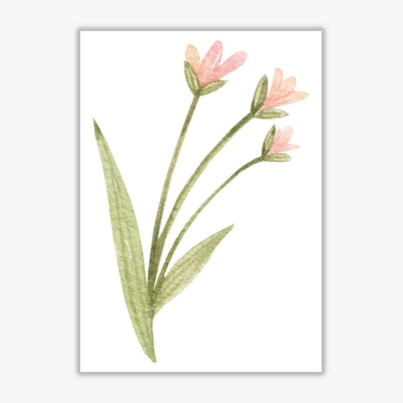 Pink watercolour flower 1 modern fine art print