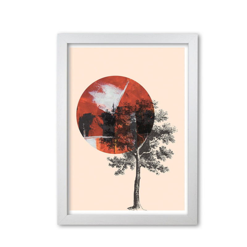 Red sun and tree abstract modern fine art print