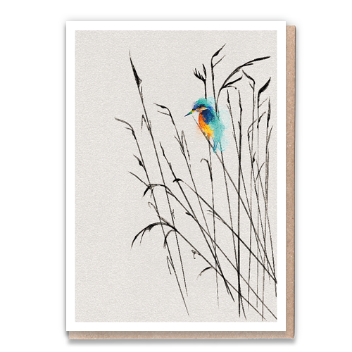 1 Tree Card 100% Recycled Greeting Card Vegan Inks - Kingfisher