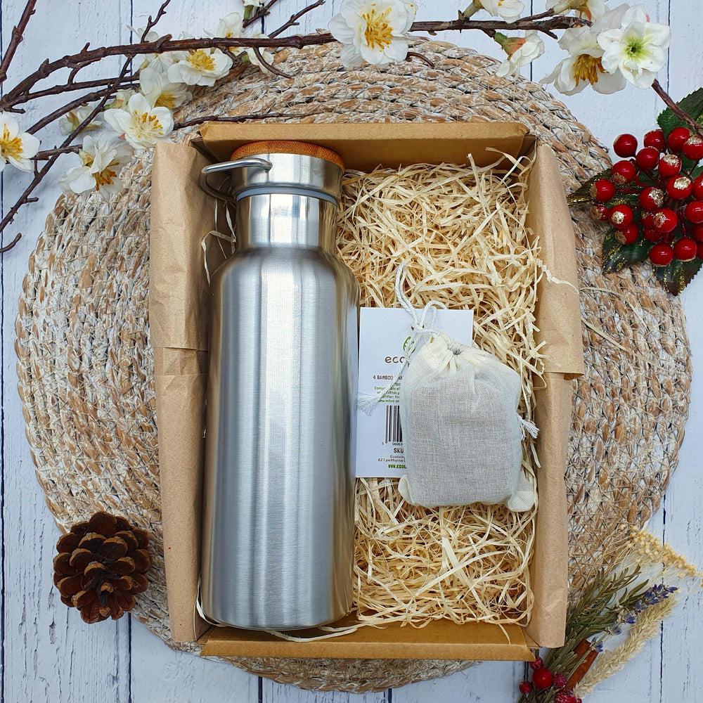 Insulated Stainless Steel Water Bottle & Charcoal Water Filters