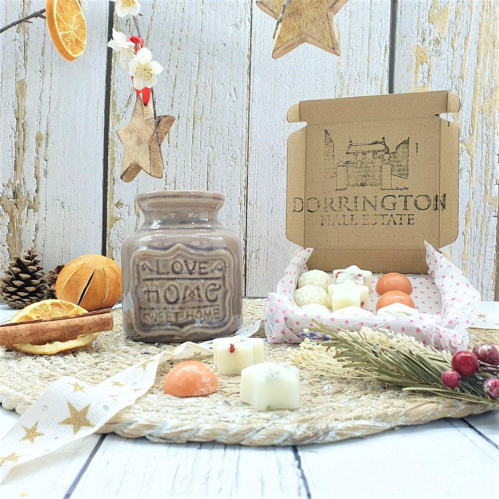 Wax Melt Burner Lavender Grey & Christmas Botanical Wax Melts Gift Set