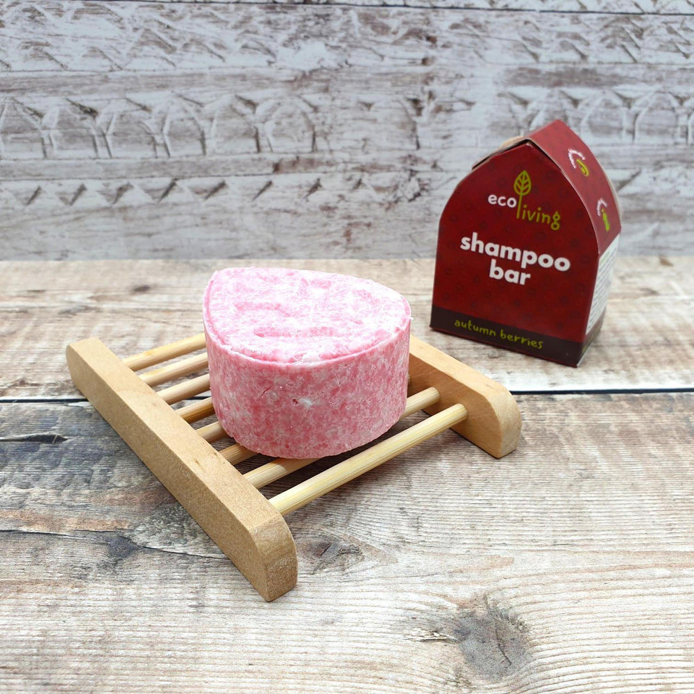 Vegan Eco-friendly Autumn Berries Shampoo Bar - ecoLiving