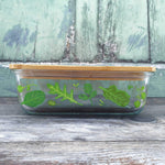 Powered By Plants Glass Storage Box Large - Sass & Belle